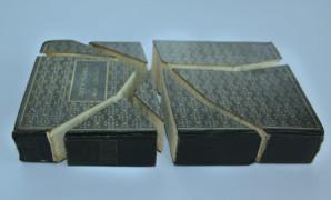 Il vergognoso problema dei libri piratati