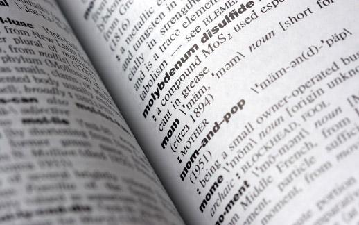 I dizionari dello scrittore